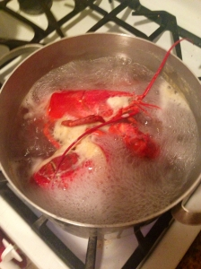 cooking lobter