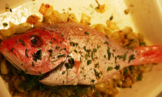 fish uncooked